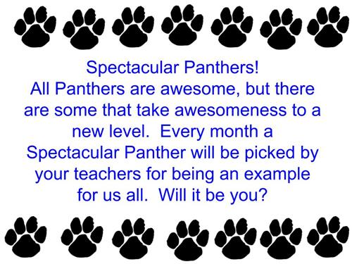 Spectacular Panthers