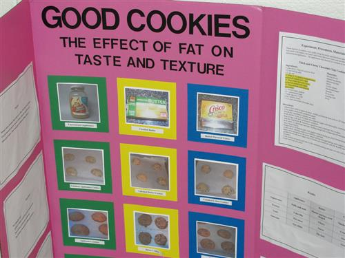 Science Fair Project Example